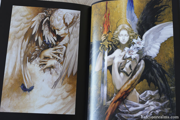 Santa Lilio Sangre - Ayami Kojima Artworks Book Review